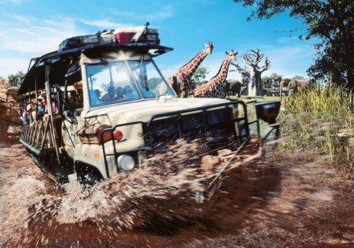 's Animal Kingdom Theme Park - Kilimanjaro Safaris © Disney